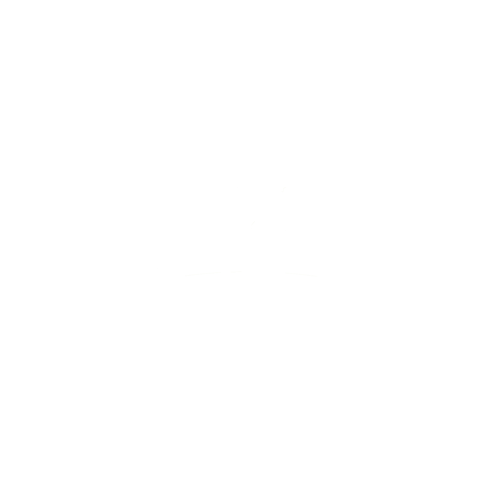 vision dog training white logo